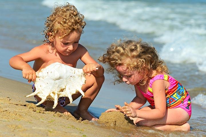Beach-And-Sea-Shell-Hunt