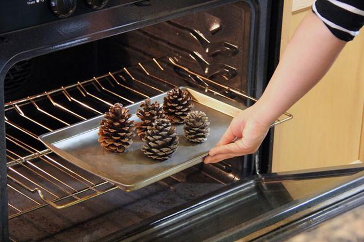 baked-pinecones.jpg