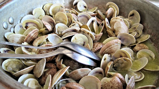 steamed-clams-603110_640